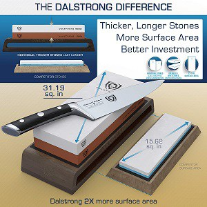 Dalstrong Whetstone Review