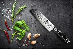 TUO Santoku Knife review