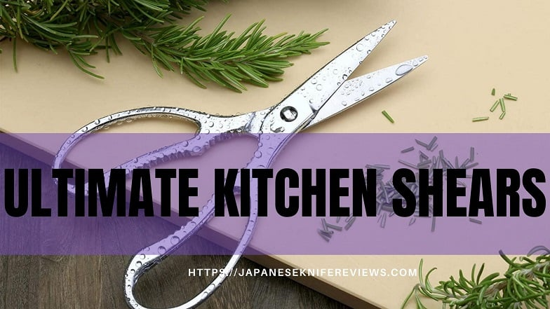 best japanese kitchen shears review